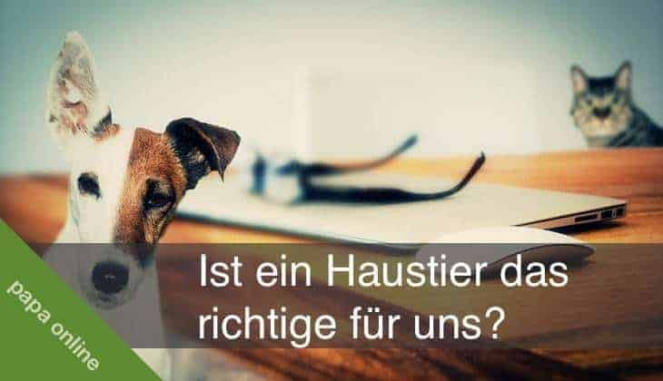 Warum Haustiere für Kinder gut sind #Werbung